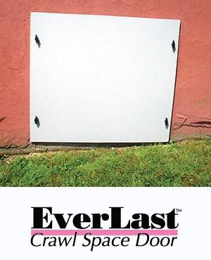 everlast1